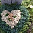 Friedhofgärtnerei Köniz