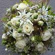 Blumen Petermann