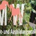 Reit- und Ausbildungsstall Burg, Wila/ZH