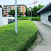 Walder's Hauswartung & Gartenunterhalt, Hecken pflege