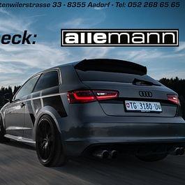 Allemann Performance GmbH