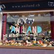 Vitrine d'automne Aniland Echallens