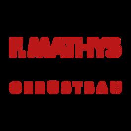 F. Mathys Gerüstbau GmbH