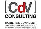 CDV Consulting