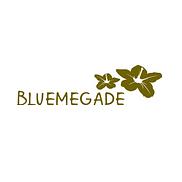Bluemegade Reitnau