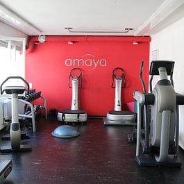 Amaya Institut