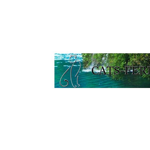 Cats-Ferienparadies