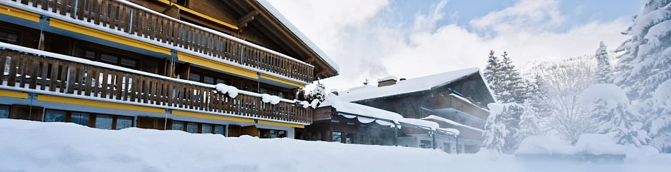 Hotel Alpine Lodge