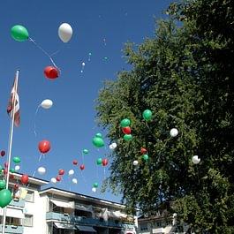 Sommerfest 2015.