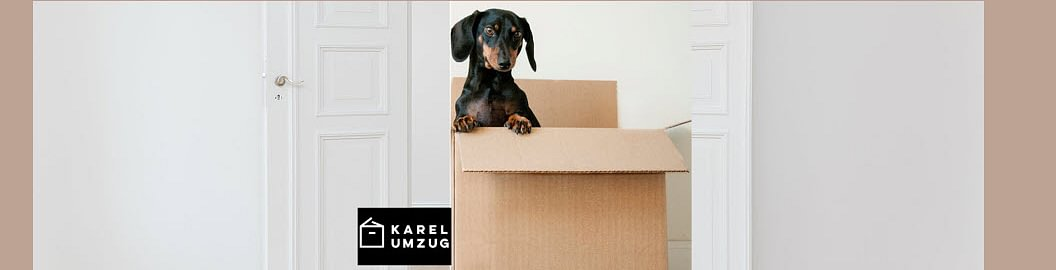 Karel Umzug
