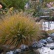 Huwiler Gartendesign