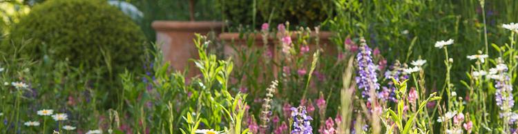 Fahrion + Partner Gartenbau AG