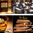 Don Alejandro's GmbH, Dietlikon