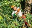 Natur Pur Fahrion + Partner Gartenbau AG