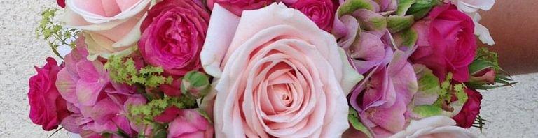 A la Rose d'Estavayer