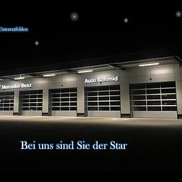 Mercedes-Van Werkstatt