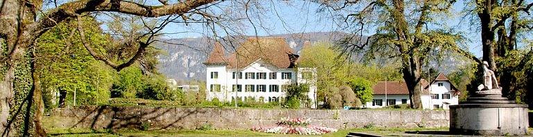 A. Früh Immobilien Schweiz AG