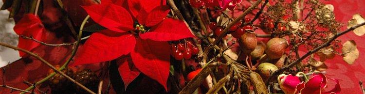 Blumen Chopard AG