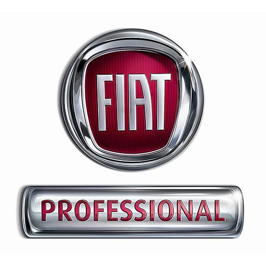 Rivenditore ufficiale Fiat Professional