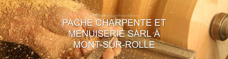 PACHE Charpente et Menuiserie Sàrl