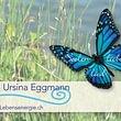 Eggmann Ursina Winterthur, Craniosacral-Therapie und Lebensenergie, Seelenliebeslied - Lebensenergie für Gesunde