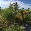 Bobst paysage et jardin Sàrl