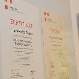 Ins Zentrum GmbH - Trisana Hans Rudolf Zweifel