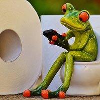 WC Service / Urinstein entfernen