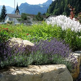 Marty Gartenbau AG