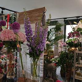 Florart negozio pre estate
