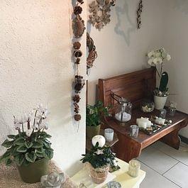 De graines en fleurs