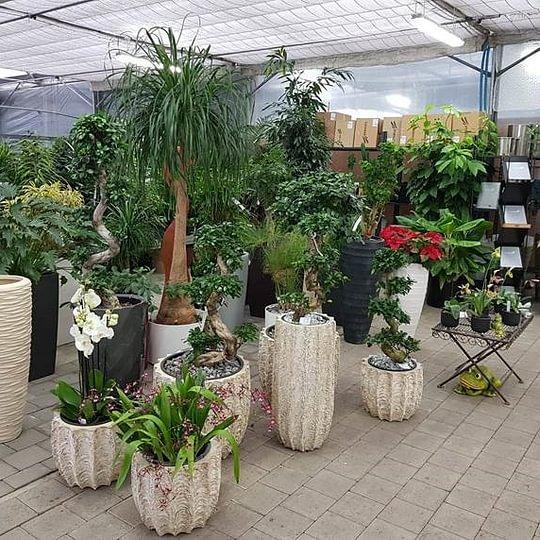 Luzerner Garten