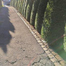 Lutz Gärten