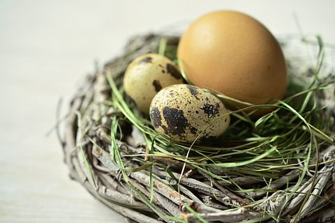 Karfreitag und Ostern kulinarisch geniessen