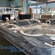 Idromassaggio SPA Swim SPA Hydropool Serenity / Self Cleaning / Aqua Sport