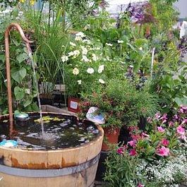 Halbierte Weinfässer als Brunnen