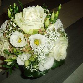 Flowers & Mohr GmbH