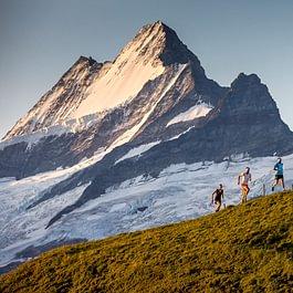 Die Backdoor Trail Runner in Action, im Hintergrund thront das Schreckhorn mit 4078 m.ü.M