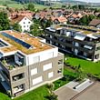 Ziltener & Partner Gartenbau AG