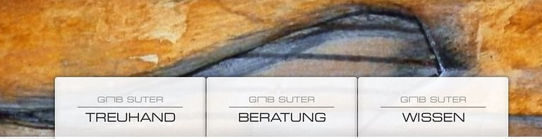 GMB Suter Consulting AG