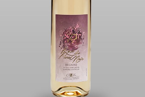 Rosé de Pinot Noir