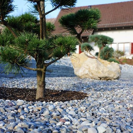 Balsiger Gartengestaltung GmbH, Garten Neugestaltung