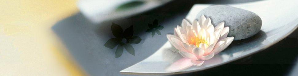 Karin Würth Traditionelle Chinesische Medizin - Energiepsychologie - Coaching mit Logosynthese®
