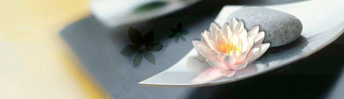Karin Würth · Chinesische Medizin · Mentale Energiearbeit · Logosynthese®