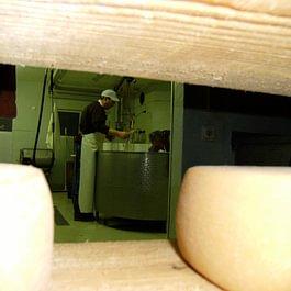 Vue sur la fabrication depuis la cave d'affinage