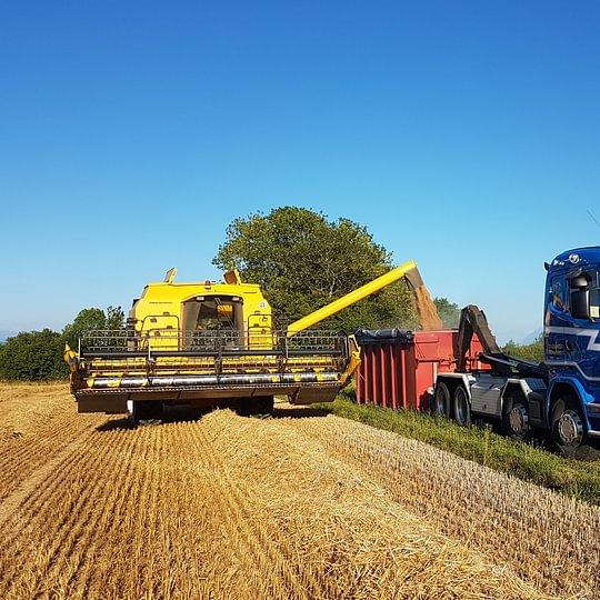 Transports de céréales