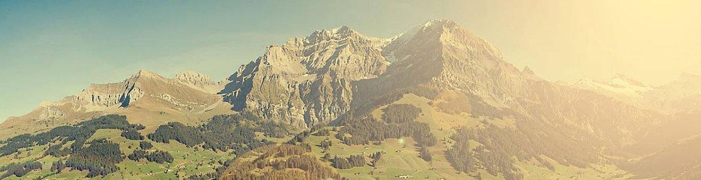 Licht- und Wasserwerk Adelboden AG