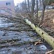 Catastrophes naturelles - interventions en urgence