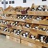 Grand choix de vins de Bordeaux.