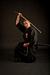 Japanische Schwert- und Stockkunst Sakura - Dojo